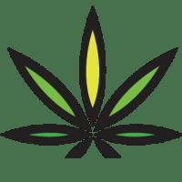Cannabis Nutrients and Deficiencies