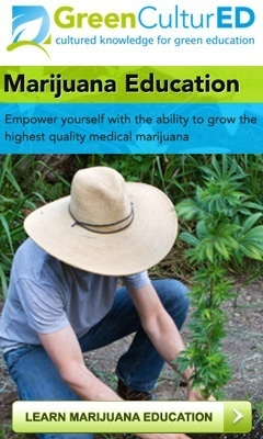 Green CulturED Online Cannabis College