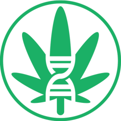 Cannabis Genetics