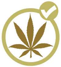 Ensuring Cannabis Workers' Safety