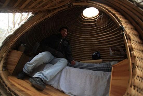 daihai fei s egg house 2