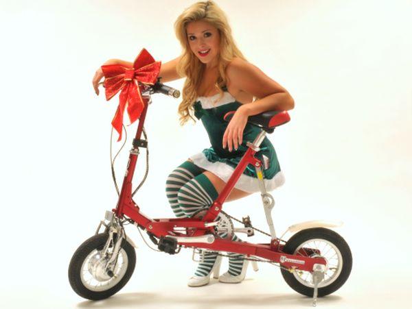 VeloMini-folding-electric-bike3