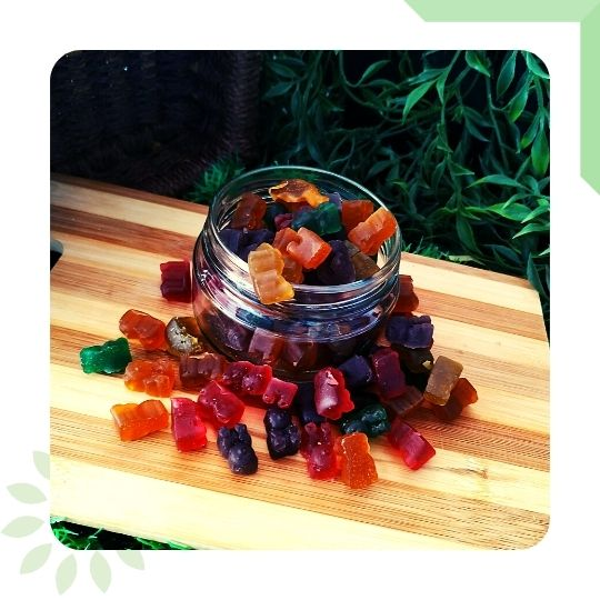 Infused Gummy Bears