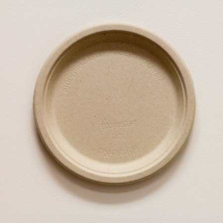 Biodegradable 10 plate