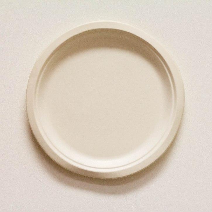 Biodegradable 10 white plate