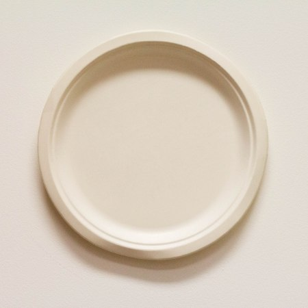 Biodegradable Plate (White)