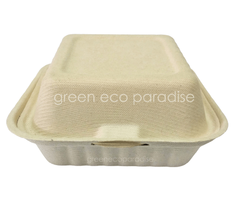 Biodegradable Burger Box