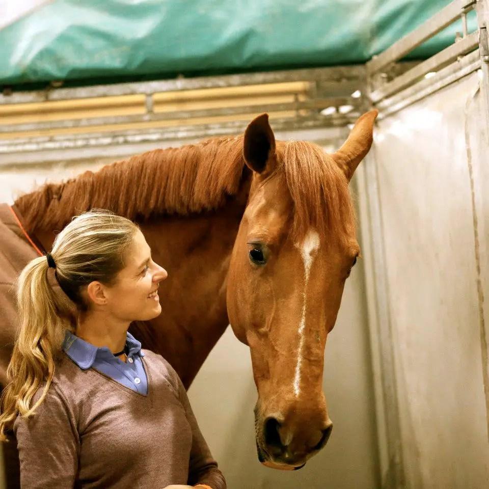 horse-rio