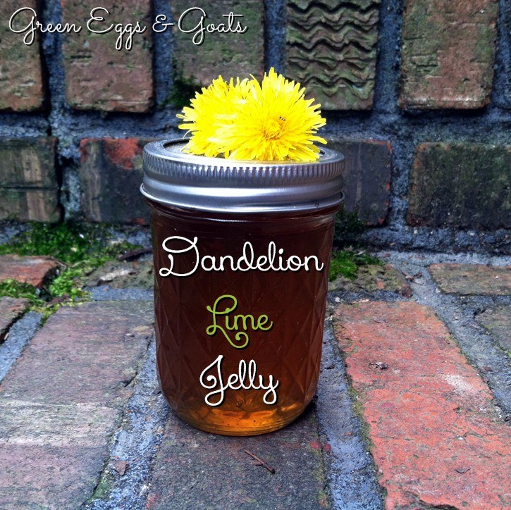Dandelion Lime Jelly Recipe