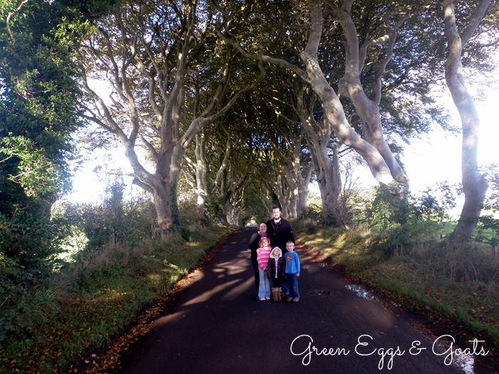 Dark Hedges, Antrim, Northern Ireland