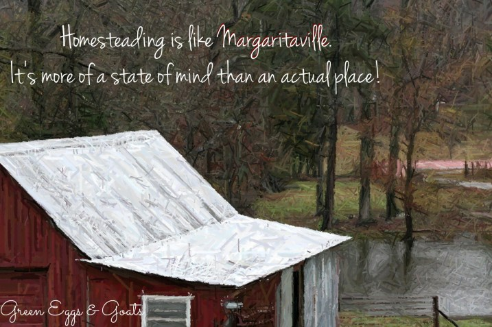 Homesteading is like Margaritaville.  It's more of a state of mind than an actual place!