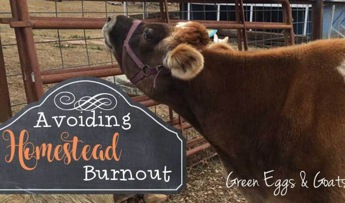 Avoiding Homestead Burnout