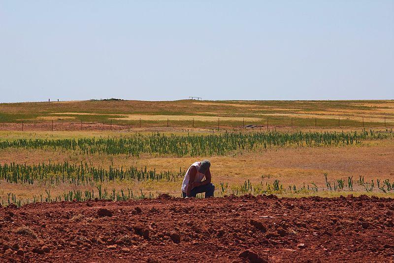 Parched Oklahoma land (Al Jazeera English, Wikimedia Commons)