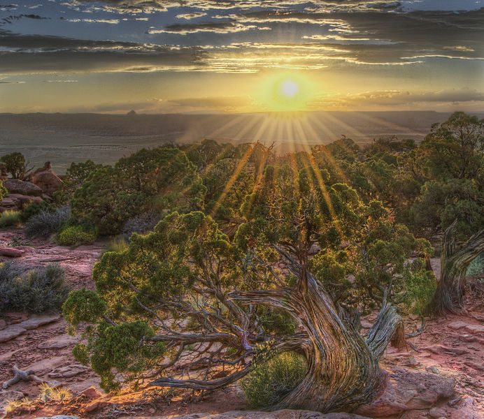 """Sunfire"" - Countryside near Moab, Utah (John Fowler, Wikimedia Commons)"