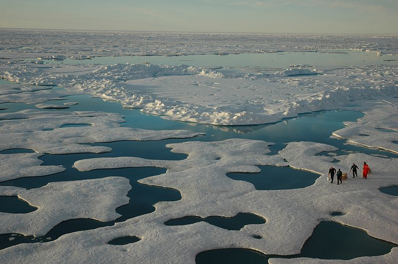 Arctic melt ponds (Photo courtesy of NOAA)