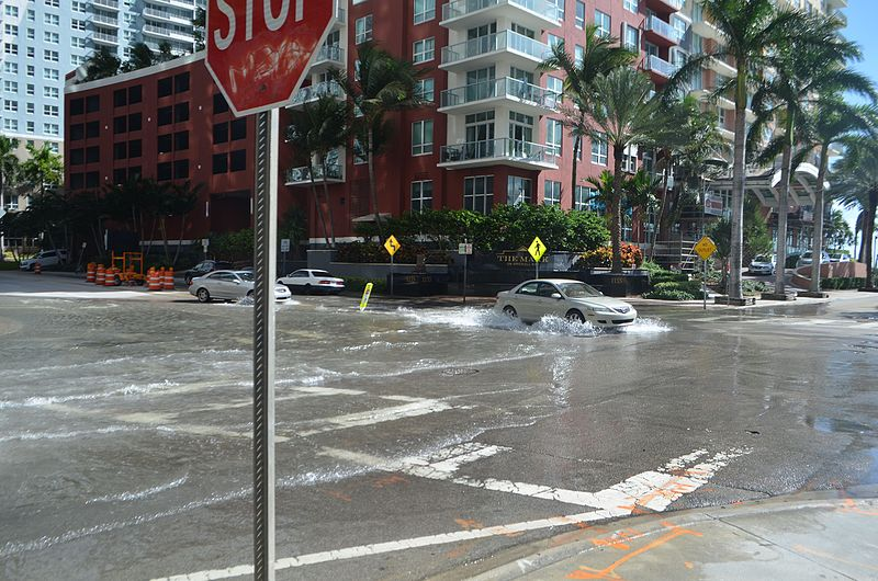 Sunny day flooding in Miami due to rising seas(Photo: B137, Wikimedia Commons)