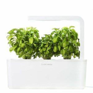 Indoor Herb Garden Kit Apartment Living [tag]