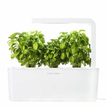 Indoor Herb Garden Kit Apartment Living
