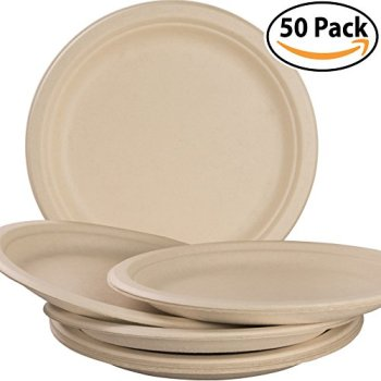 Biodegradable Plant Based Plates Apartment Living