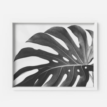 Monstera Deliciosa Art Print #1 Apartment Living