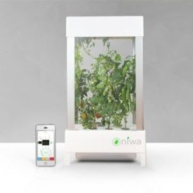 Niwa Smartphone Controlled Growing System Apartment Living