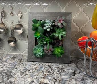 Portrait Vertical Garden Wall Planter Apartment Living