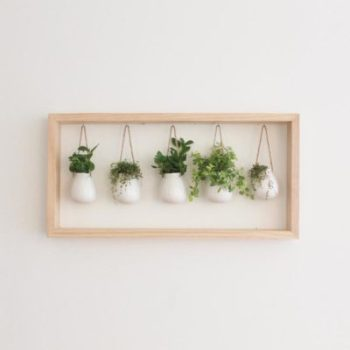 Wooden Framed Indoor Herb Garden Apartment Living