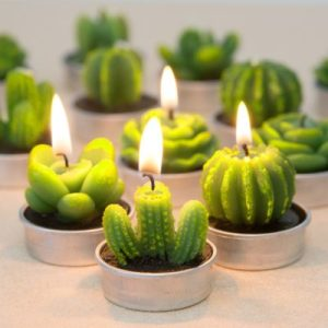 Cocomoon Cactus Tealight Candles Accessories [tag]