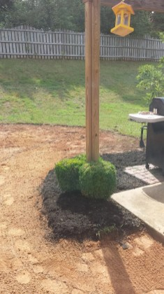 Anderson Yard Makeover (33)