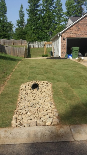 Anderson Yard Makeover (6)