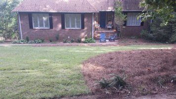 Bomar Yard Makeover (3)