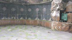 #giardino #botanico #Grancanaria #canario #fondatore #fonte dei saggi