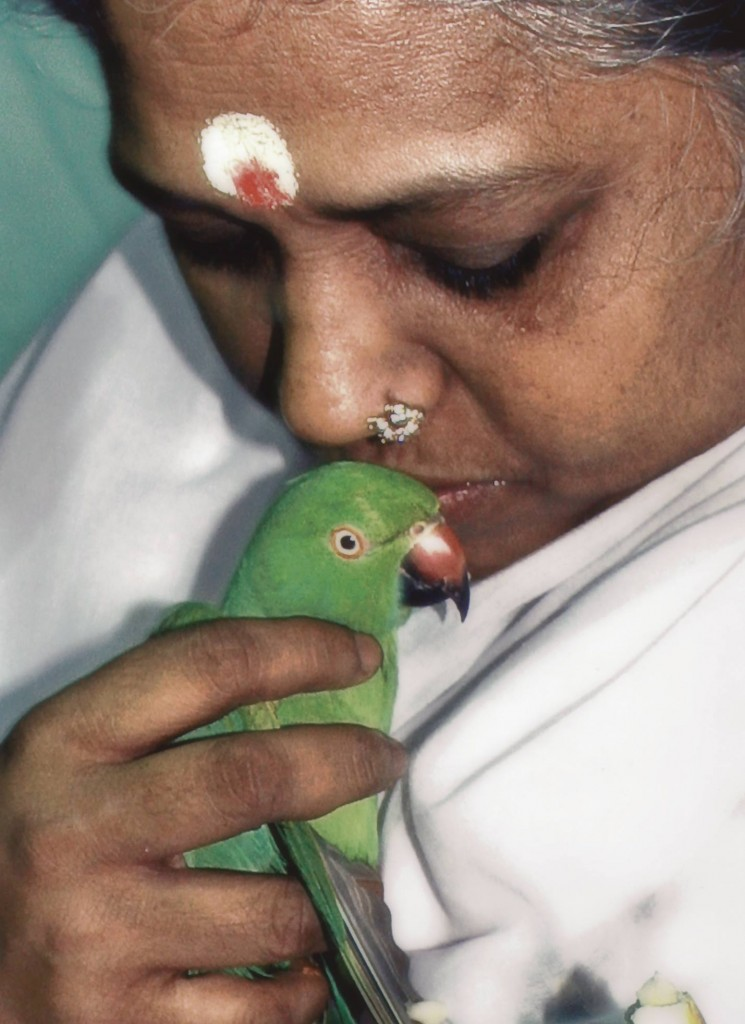 Amma and parrot