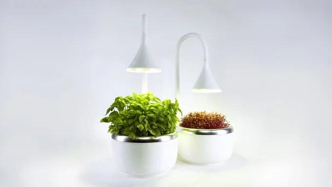 Lampe und Gefäß lassen sich individuell anpassen. (Foto: SproutsIO Inc.)