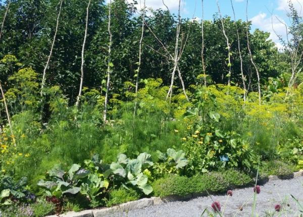 bee-friendly gardening, pollinator-friendly gardening