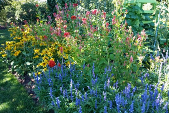 flowers and organic vegetable gardening