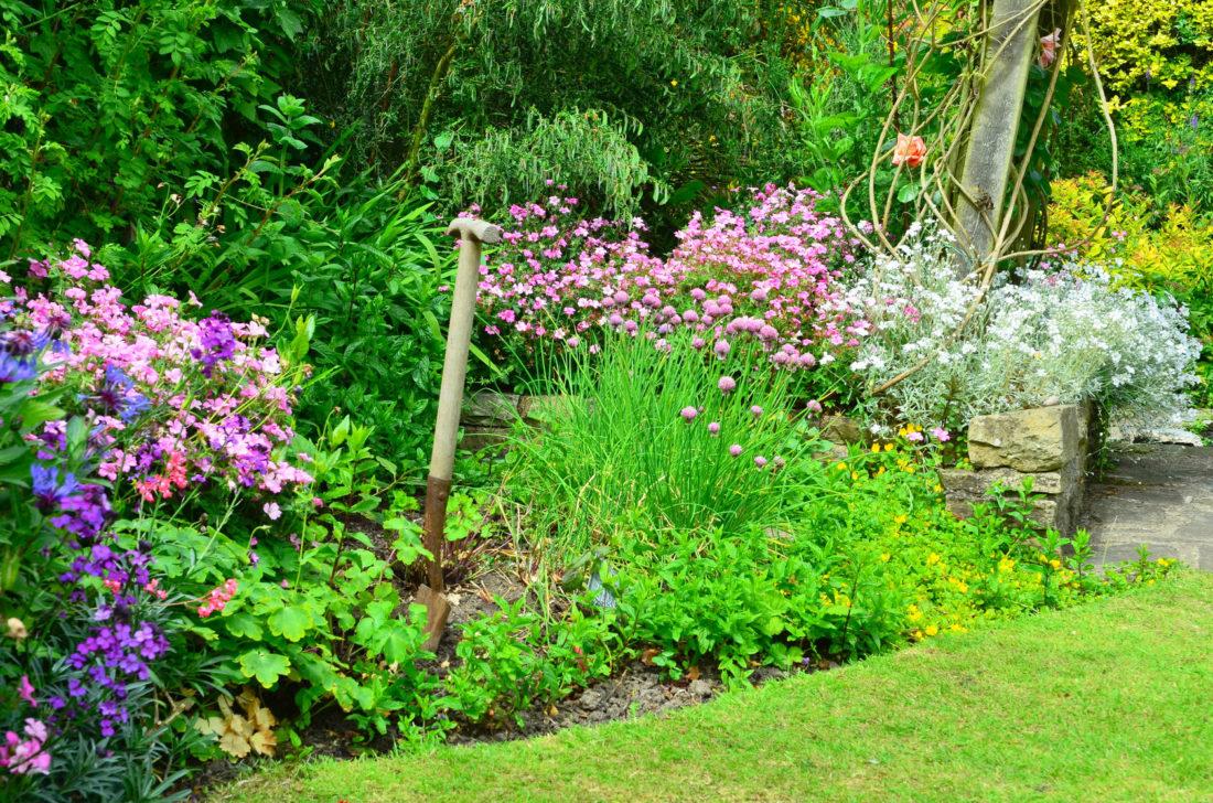 How To Plan For A Bee Friendly Garden Green Garden Buzz