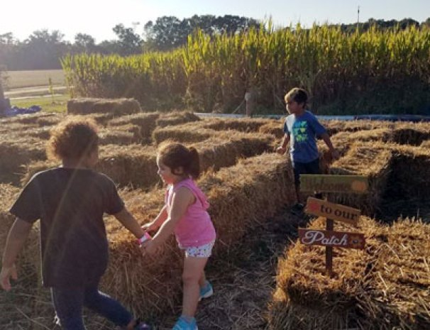 Straw Bale Maze for Kids