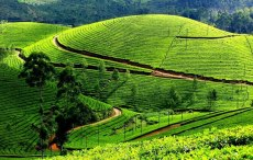 Munnar HD Wallpapers, Munnar Tourism, Kerala Tour Packages