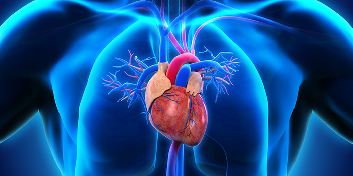 heart bypass surgery cost in india