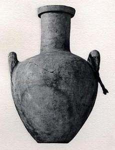 Moringa amphora