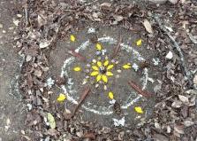 Use Nature to Spark Creativity