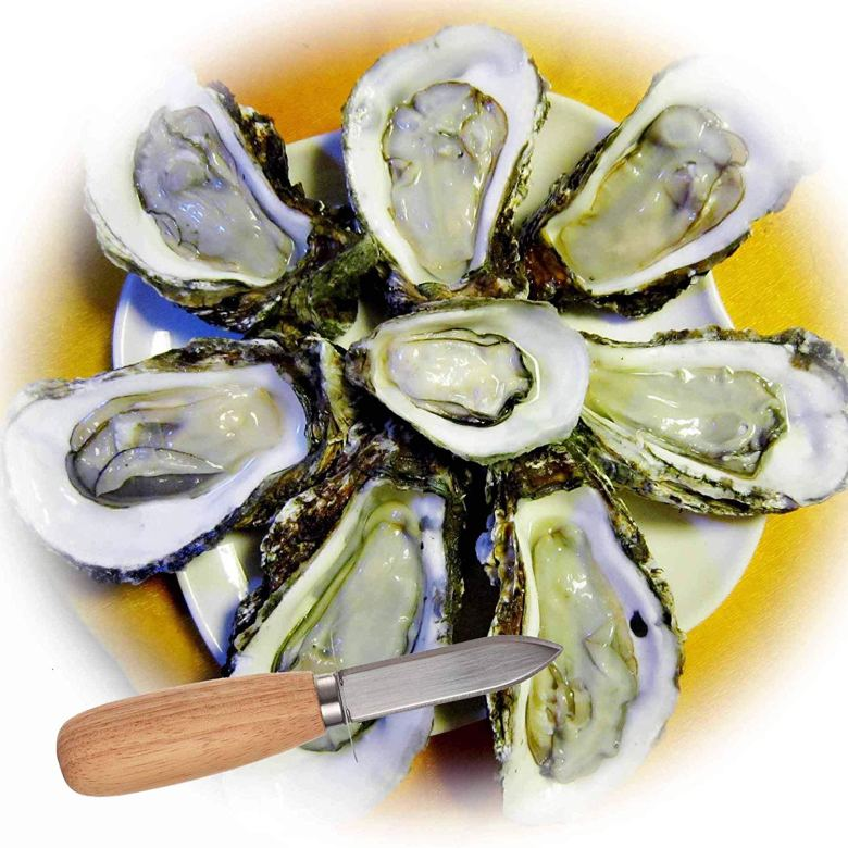 Oysters with oyster knife