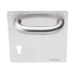 Stainless Steel Mortise Handle - Stainless Steel Fix Handle on Plate