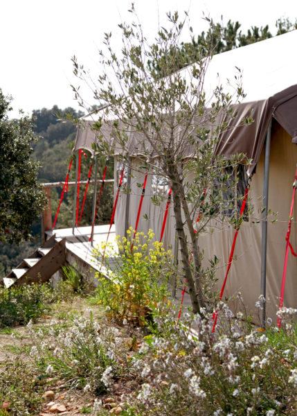 Lodge en Camargue