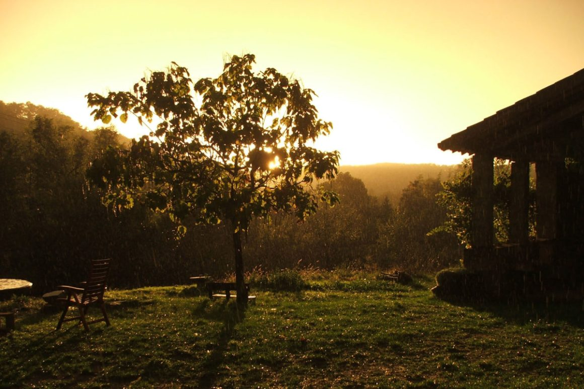 Lumière de fin de journée, domaine Les Quatre Toits, dans le Tarn-et-Garonne. © Les Quatre Toits