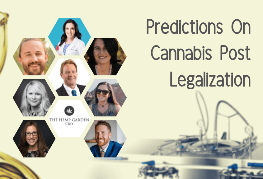 9 Experts Make Their Predictions on Cannabis Post Legalization
