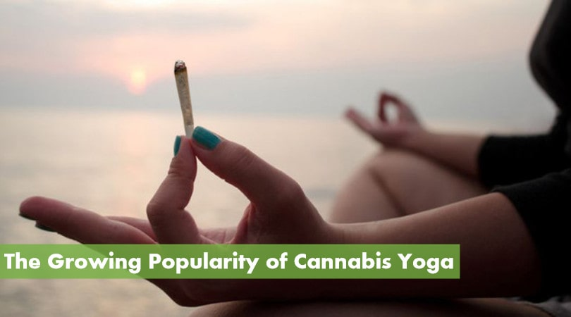 The Growing Popularity of Cannabis Yoga