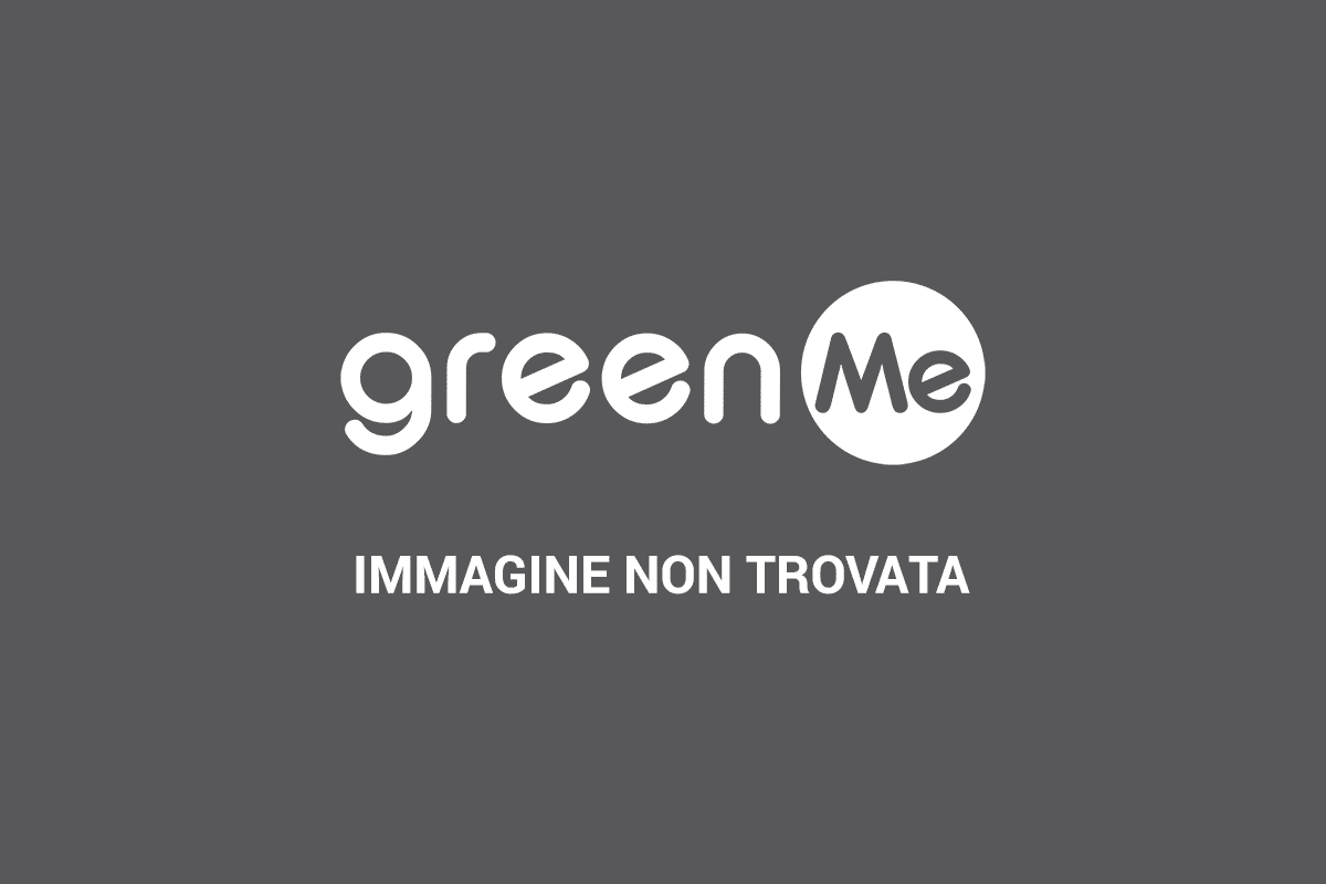 https://i2.wp.com/www.greenme.it/images/bambini_fotovoltaico.jpg