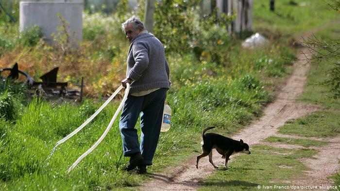 José Mujica chiede di essere sepolto accanto alla sua cagnolina Manuela -  greenMe